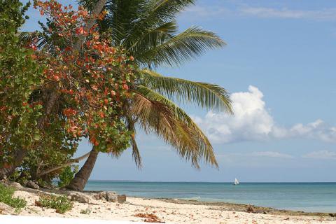 playa-republica-dominicana.jpg